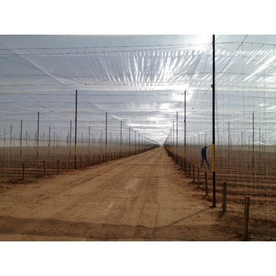 Израелски многослоен  полиетилен за оранжерии - 125 mic