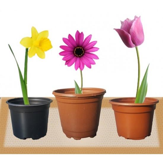 Кафява саксия за цветя, семена и разсад