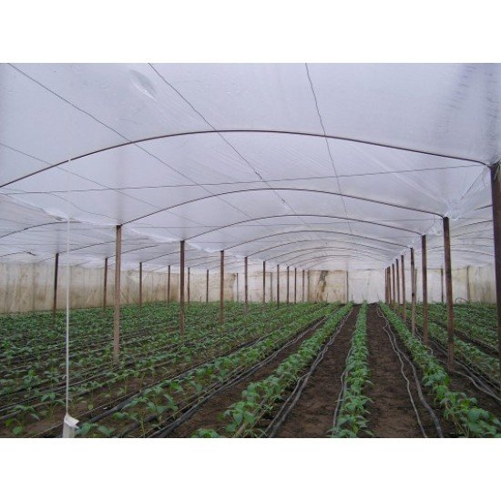 Израелски многослоен полиетилен за оранжерии - 160 микрона- Зелен